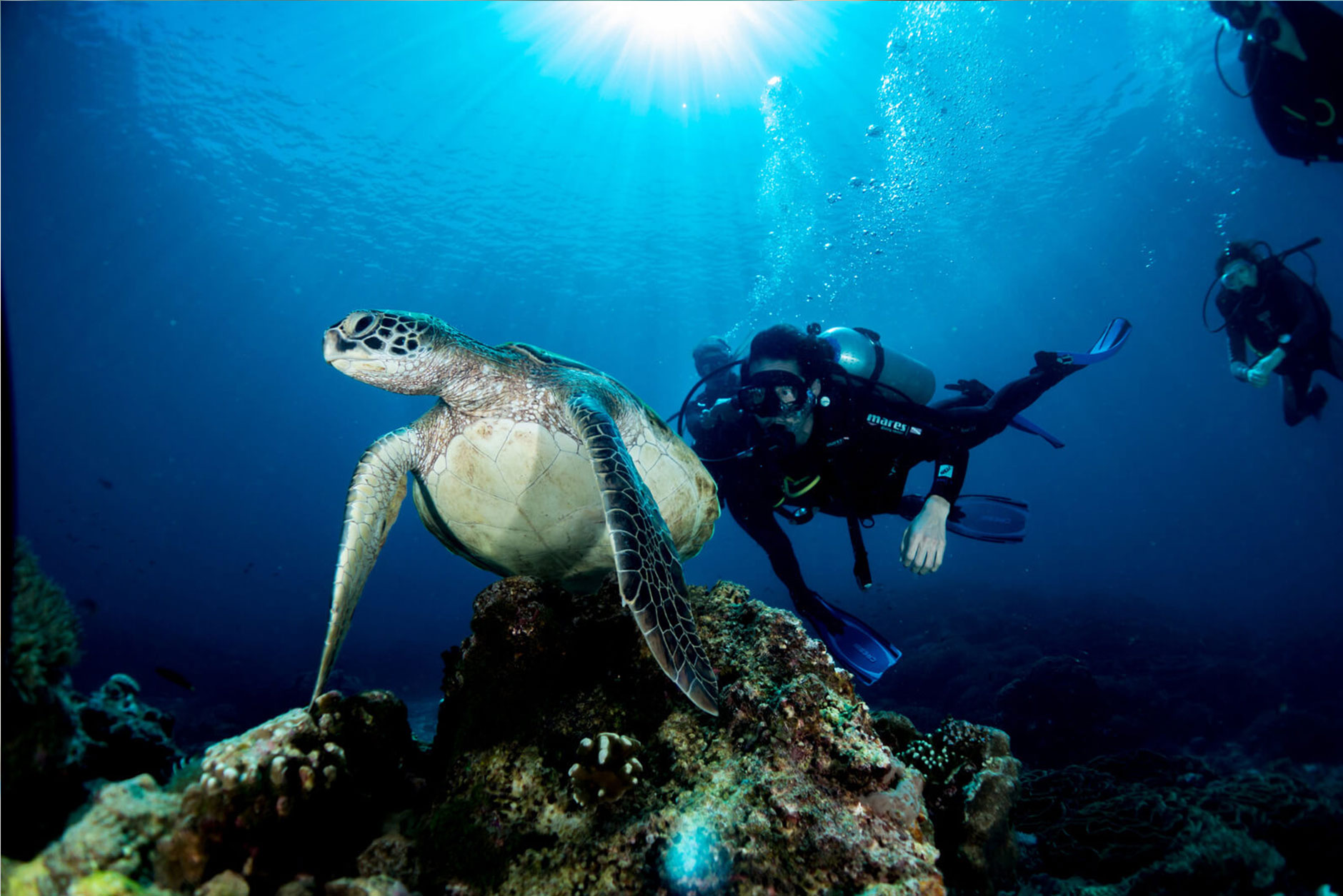 Discover Scuba Diving Aqura Dive